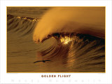 Golden Flight