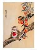 Monkey by Peaches