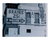 brains    drive-in