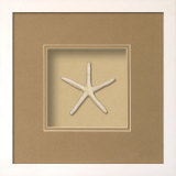 *Exclusive* Starfish Shadowbox - Sand