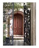 Charleston Door & Iron Gate