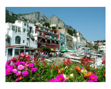 Capri&#39;s Marina with Flowers