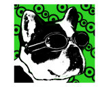 Green Boston Mod Pop art