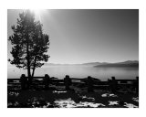 Winter day at Lake tahoe