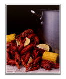 Crawfish (Small Border)