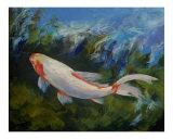 Zen Koi Fish