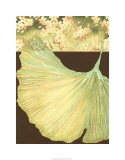 Filigree Ginkgo I
