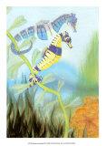 Seahorse Serenade III