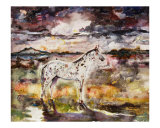 Appaloosa Spirit Horse