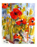 Poppies &amp; Blue Sky