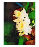 Tropical Orchid - Orchid Painting Collection
