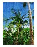 Palm Tree Palm Painting  Scenic Landscape
