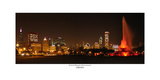 Chicago White Sox world Champions  Skyline