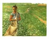 Young Rosa in Cotton Field (available as print  contact artist)