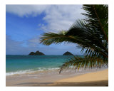 Kailua Dreams