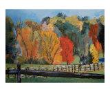 Colors of Autumn  Pennsylvania