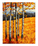 Autumn Aspens at Winter Park  Colorado