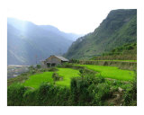 Sapa  Viet Nam