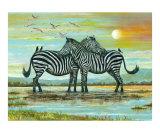 Loving Zebras  Kenya