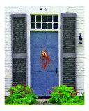 Walpole Shutter Doorway