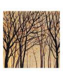 Moon Shadow Trees 1
