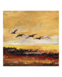 Canada Geese in Flight 3
