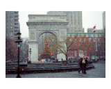 Washington Square Arch & Christmas Tree - New York
