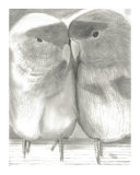 Black and White Love Birds Fine Art Drawing