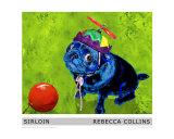 Sirloin the Pug