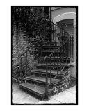 Savvannah Stairs III