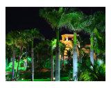 Atlantis at Night  Bahamas