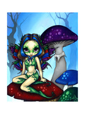 Masked Fairy on the Mushrooms