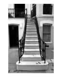 Savannah Stairs II