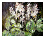 White Hostas Oil Painting Expressionist