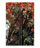 Charleston Gate & Flora