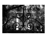 Hasell Street Gate 1  Charleston  SC