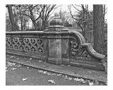 Central Park  Bridge Scrollwork I