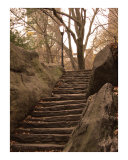 Steps at Outcropping  Central Park
