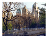 Pine Bank Arch  Central Park  NYC