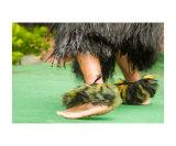 Hula Feet