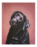 Black Labrador Girl Eponine