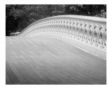Bow Bridge Abstract  Central Park New York