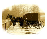 Amish Carriages Parked