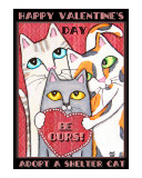 Valentine's Day Shelter Cats
