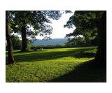 Tanglewood Berkshires