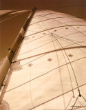 Windward Sail I