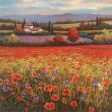 Poppy Pastures I Reproduction d'art par T. C. Chiu