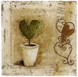 Topiaires Coeur et Pots