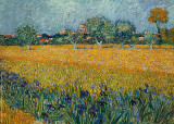 Field of Flowers near Arles