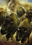 Buffeljagd